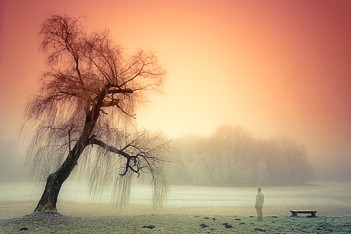 Sad-Nature-Wallpapers-4